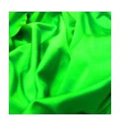 Buy Bright Green Nylon Lycra Online